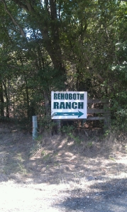 Grass-Fed Beef: Rehoboth Ranch