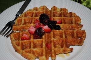 paleo gluten free grain free dairy free coconut flour waffles