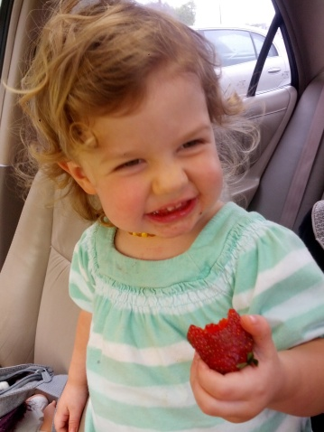 eating strawberries from Earthwise Gardens in Denton