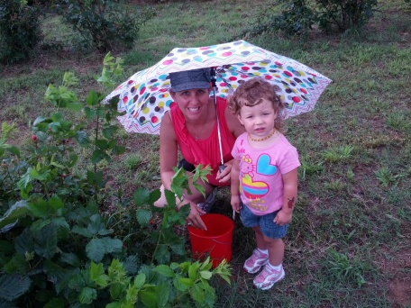 Crunchy Hot Mama picking blackberries