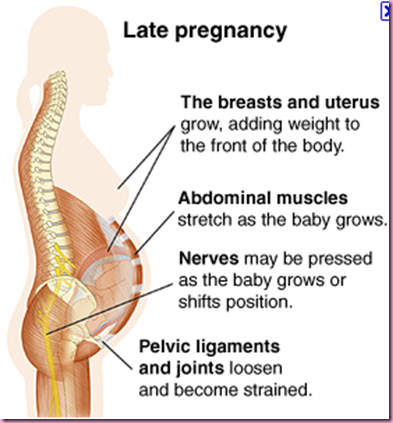 how to know if your water is leaking during pregnancy