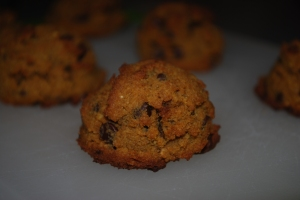 paleo coconut flour pumpkin chocolate chip cookies